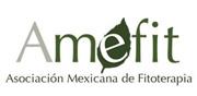 Logo Amefit